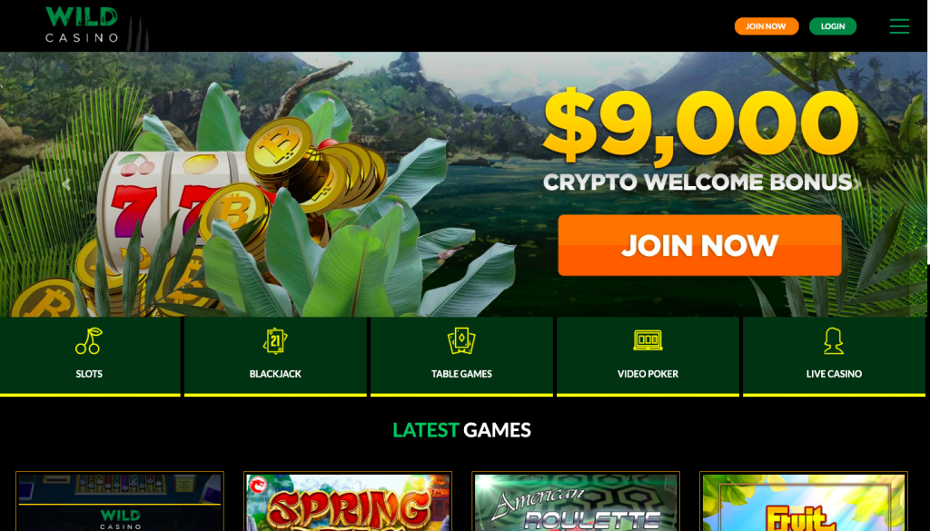 Wild Casino website